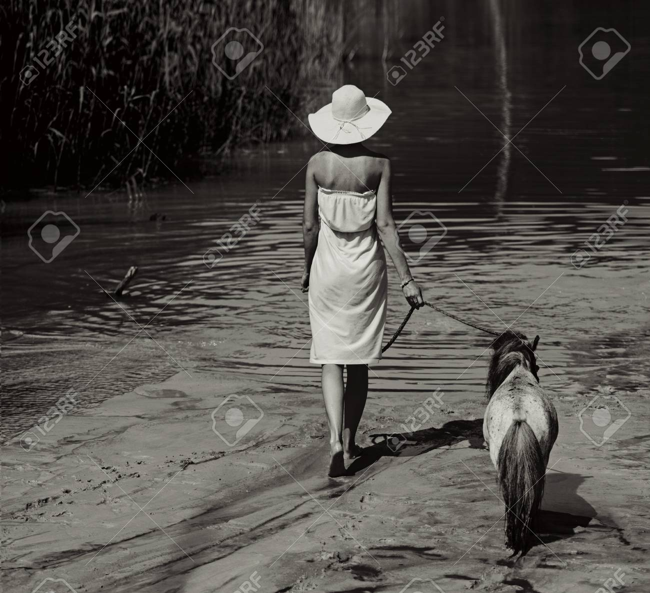 Photo of the woman walking with little pony Stock Photo - 29748440
