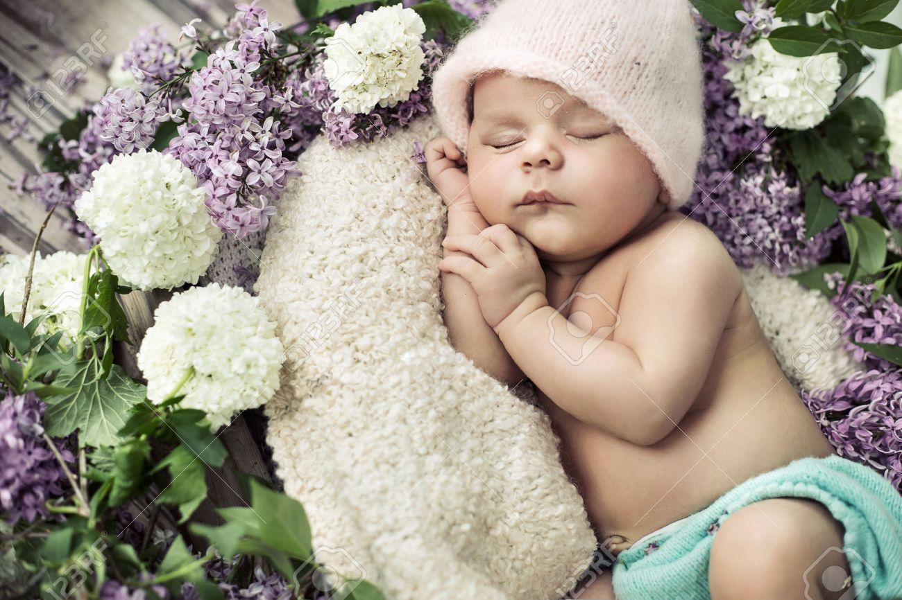 carino ragazzo addormentato tra i fiori profumati Archivio Fotografico - 42115281