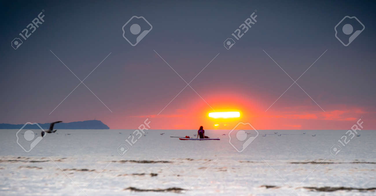 Silhouette of the girl on a surfboard at sunset - 164447692
