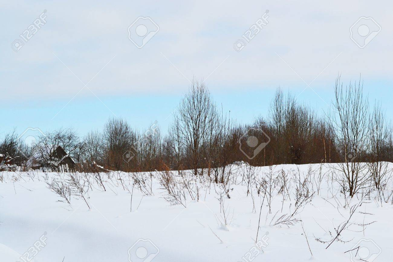 Winter landscape with snow covered field on the background of cloudy sky Stock Photo - 10798801