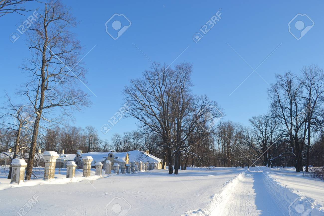 View of park in Oranienbaum on a sunny winter day, Russia Stock Photo - 11469472