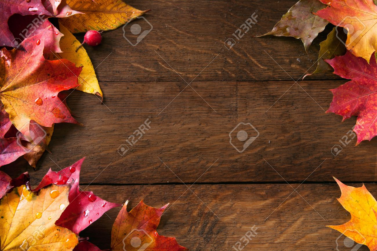 yellow wet autumn leaves on the background a dark old wood Stock Photo - 10656828