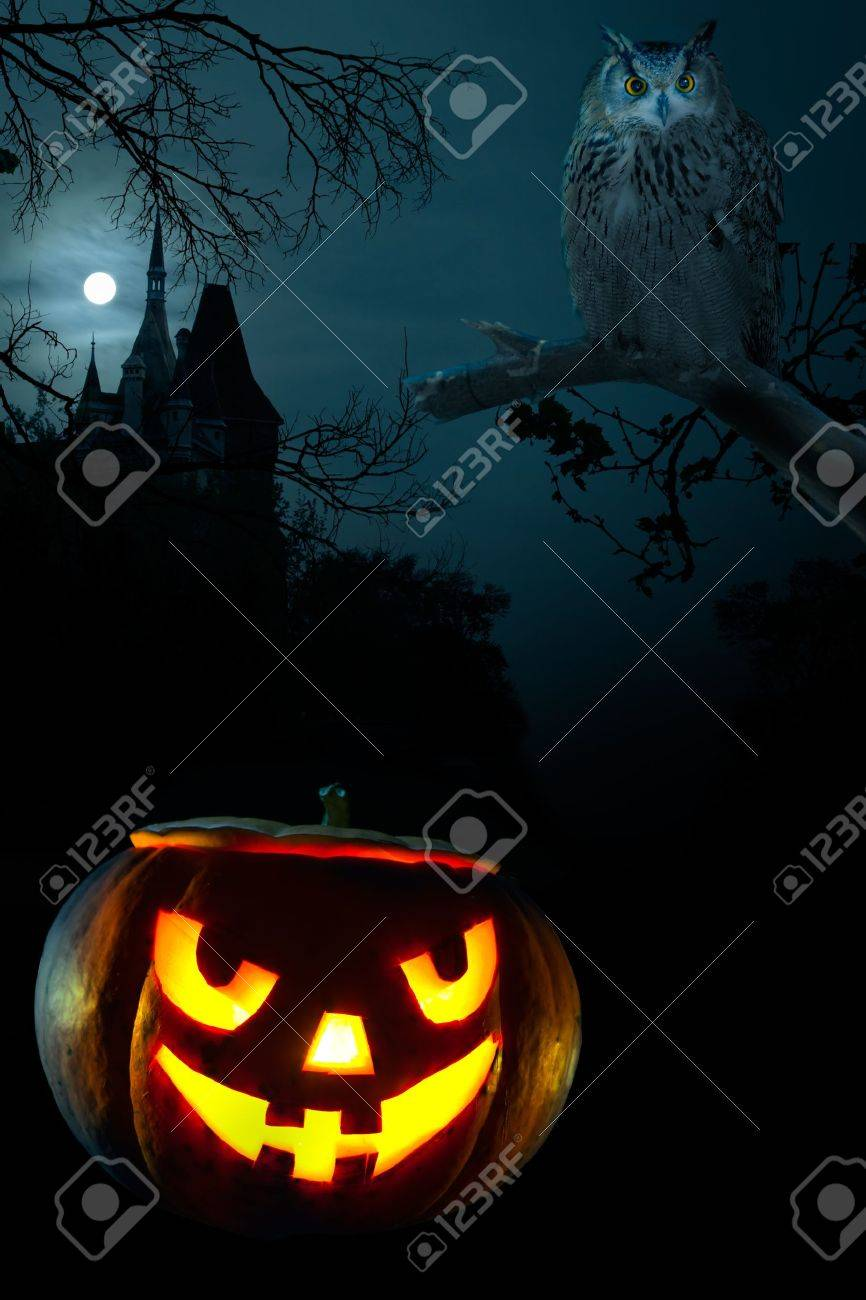 Scary pumpkin, Owl and the castle on Halloween nigh Stock Photo - 10700136