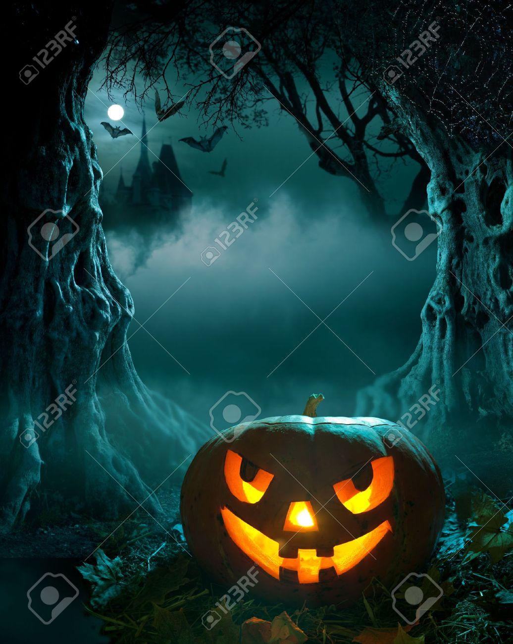 creepy woods  Halloween  Creepy Woods Moon