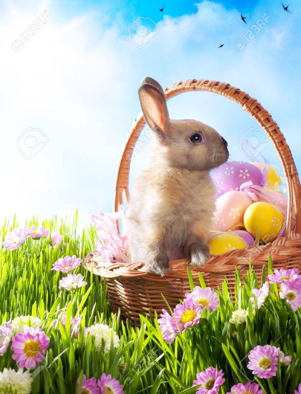 Easter Basket With Decorated Eggs And The Easter Bunny Stock Photo ... for Easter Eggs In A Basket With A Bunny  579cpg