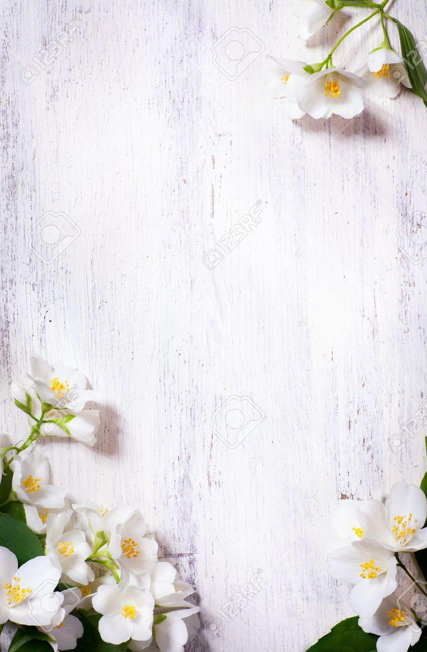 Art jasmine spring flowers frame on white background stock photo art jasmine spring flowers frame on white background stock photo 13782054 mightylinksfo