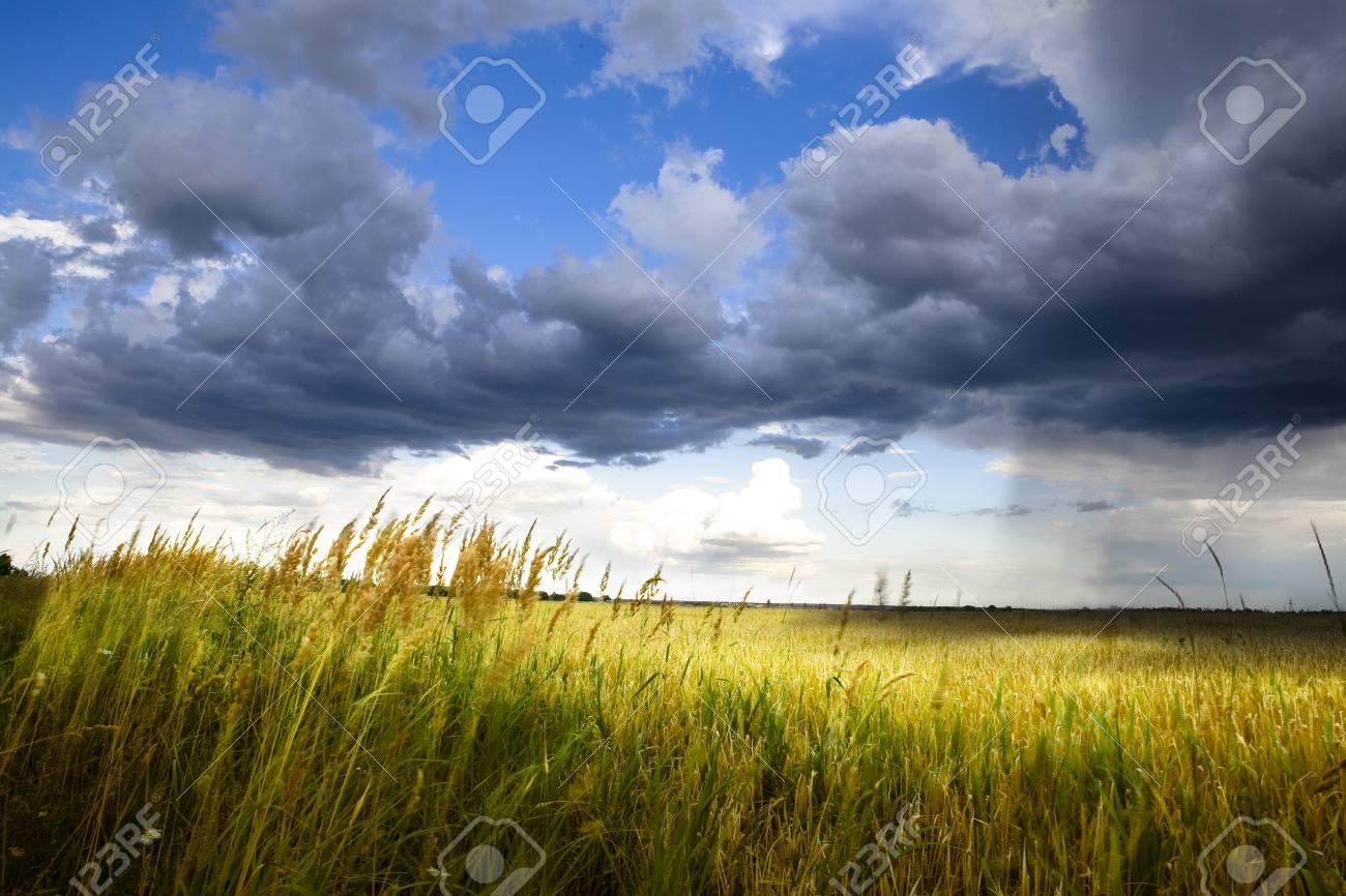 art rain Stock Photo - 18575527