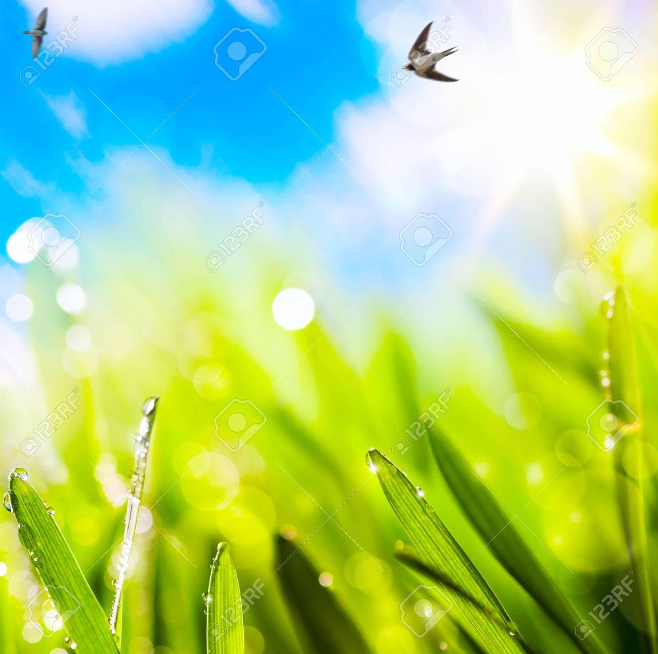 рефераты весной фон Фотография картинки изображения и сток  рефераты весной фон Фото со стока 26084200
