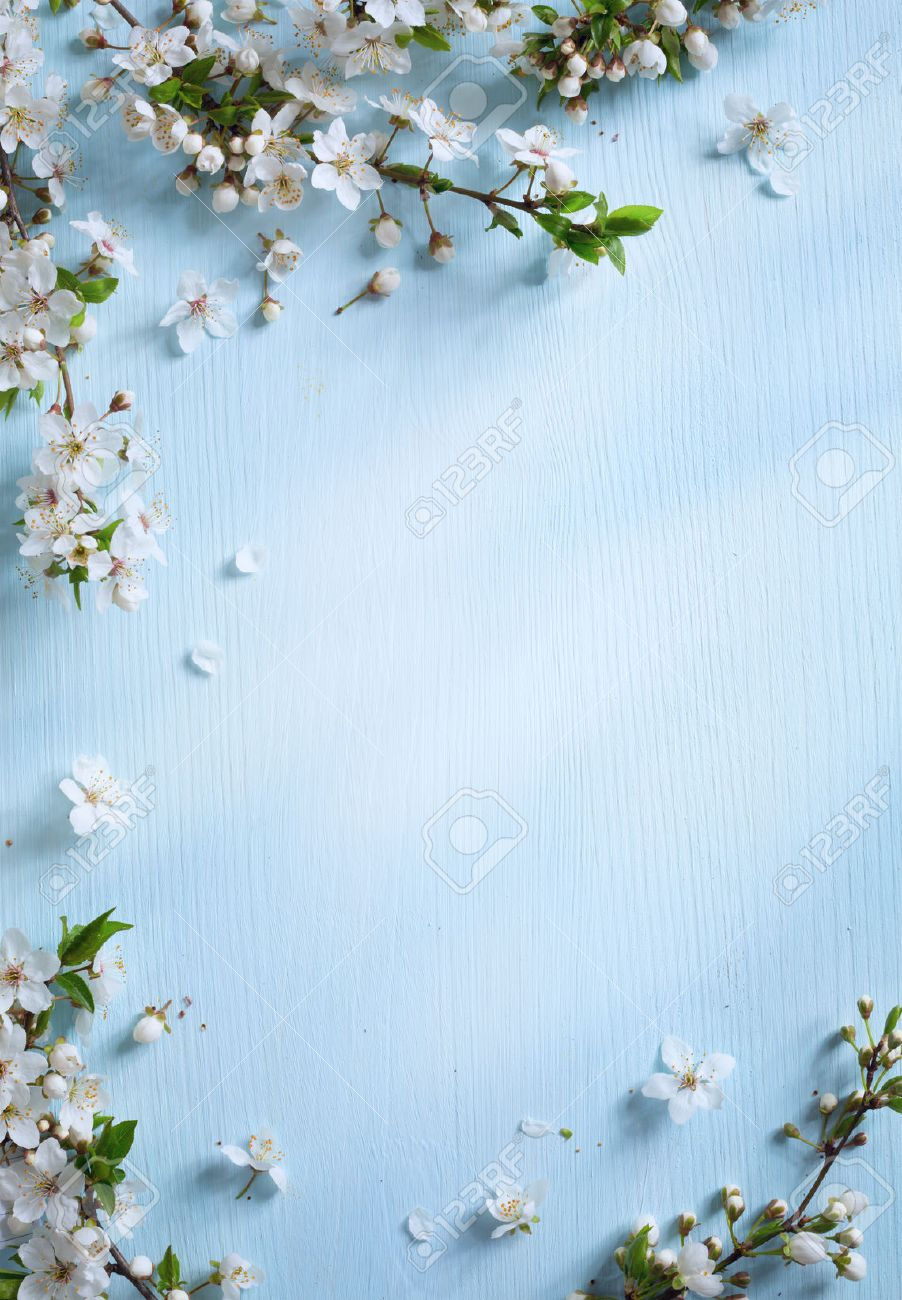 Art spring floral border background with white blossom stock photo art spring floral border background with white blossom stock photo 39368410 mightylinksfo