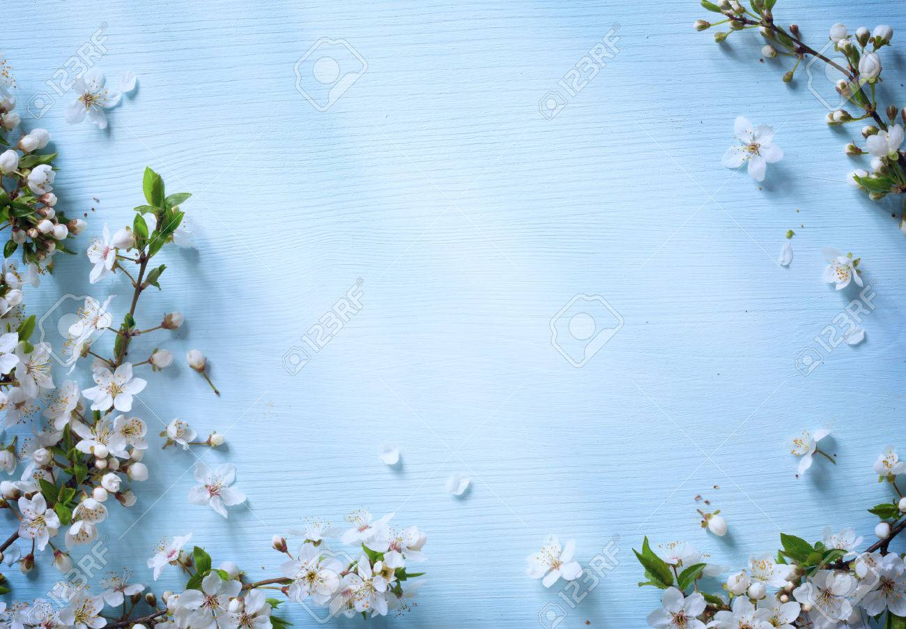 Art spring floral border background with white blossom stock photo art spring floral border background with white blossom stock photo 39582572 mightylinksfo