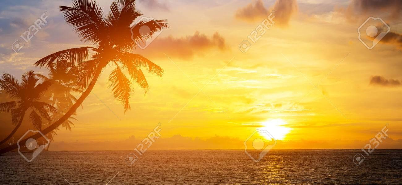Art Beautiful sunrise over the tropical beach - 40915287