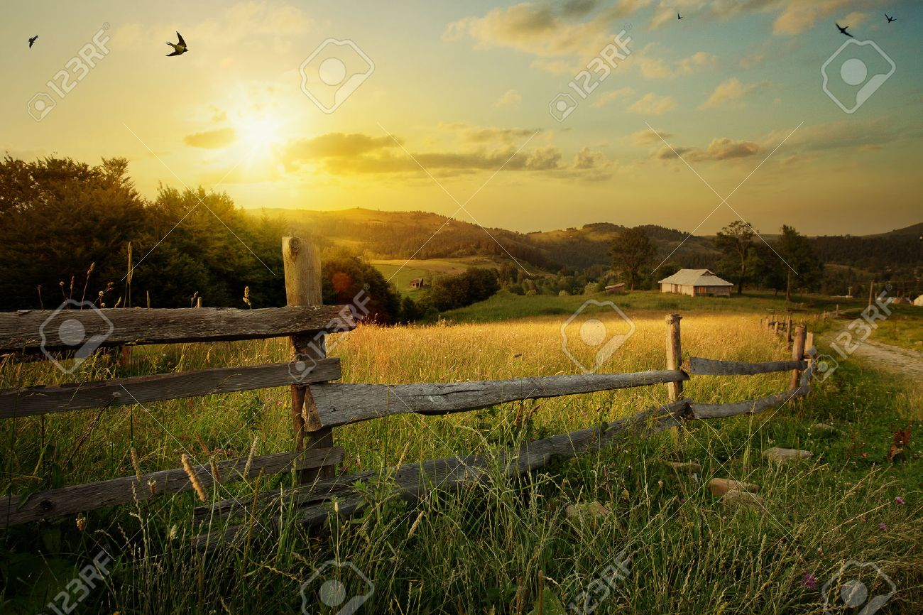 art rural landscape. field and grass Stock Photo - 43268687
