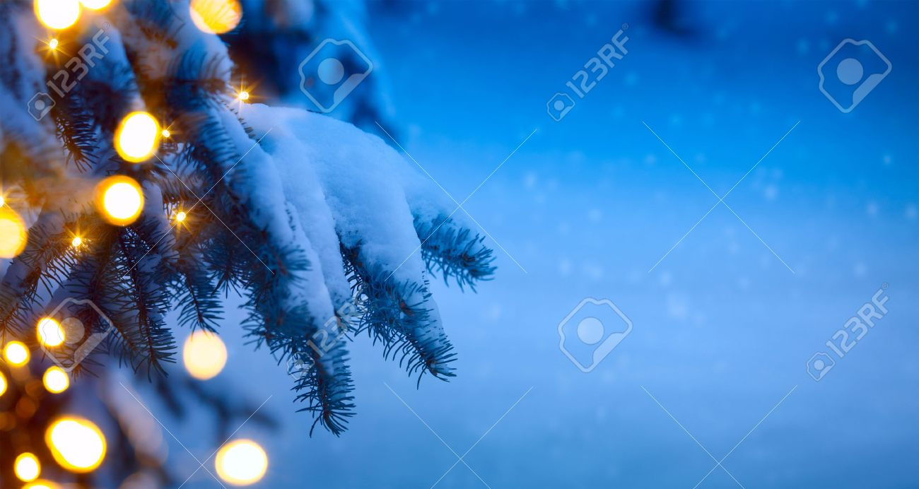 christmas holiday party background stock photos pictures christmas holiday party background christmas tree light blue snow background stock photo