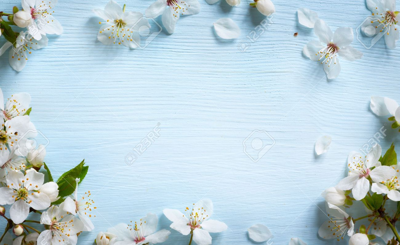 Spring border background with white blossom Stock Photo - 53597409