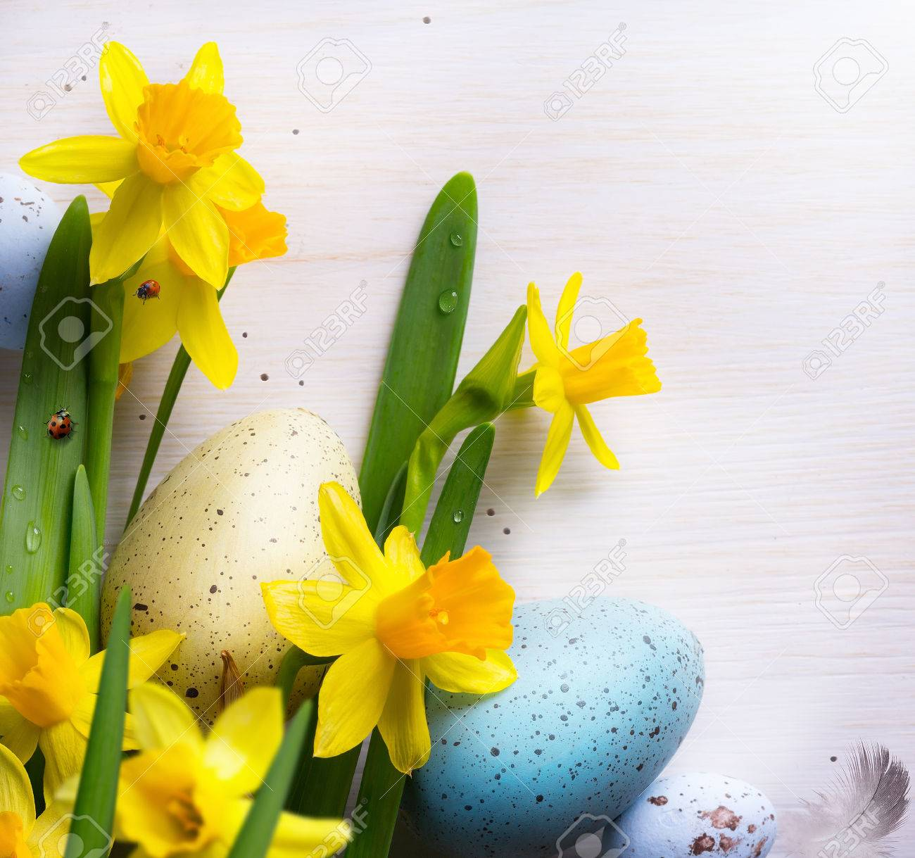 Happy Easter Background With Easter Eggs And Yellow Spring Flowers