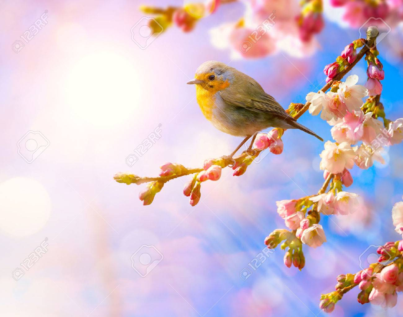 abstract spring landscape nature floral background with pink