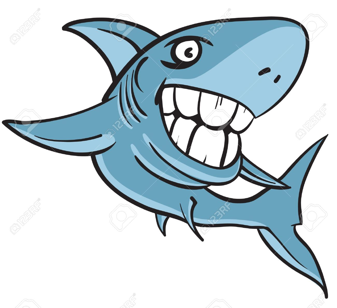 Atractivo Gran Diagrama Anatomía Tiburón Blanco Viñeta - Imágenes de ...