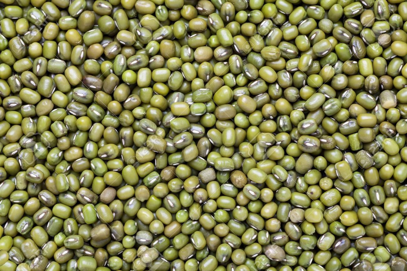mung beans Stock Photo - 18363566