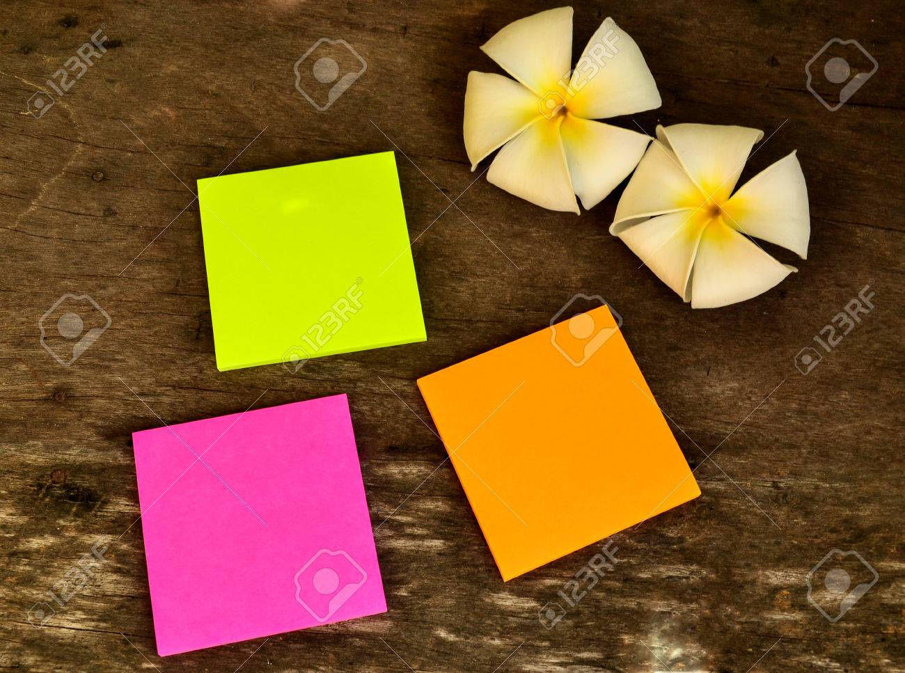 Colorful Post It Note With Plumeria Flower On Wooden Board Stock