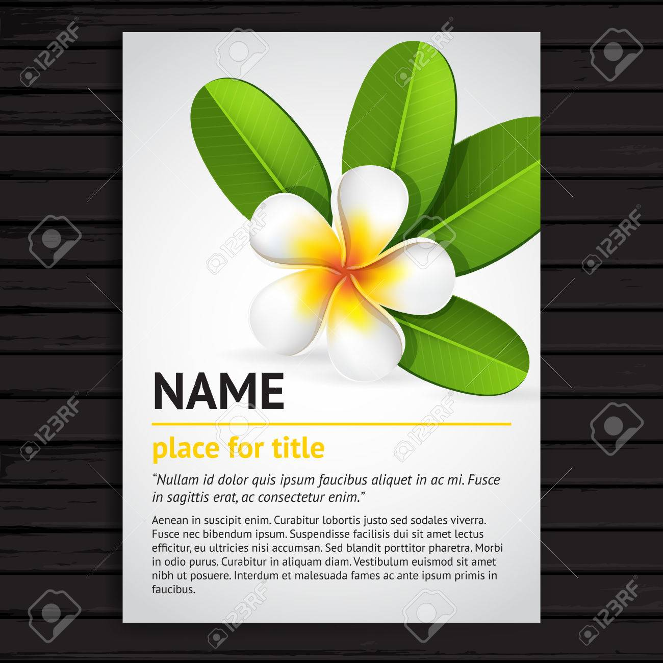 A4 Size Poster Template Design With Realistic White Frangipani Royalty Free Cliparts Vectors And Stock Illustration Image 33416913