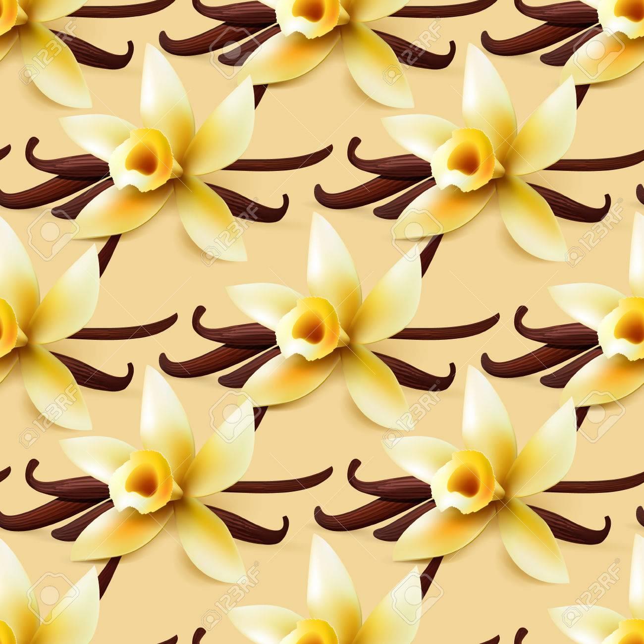 Vanilla Blume Vektor Nahtlosen Hintergrund Susse Geschenkpapier