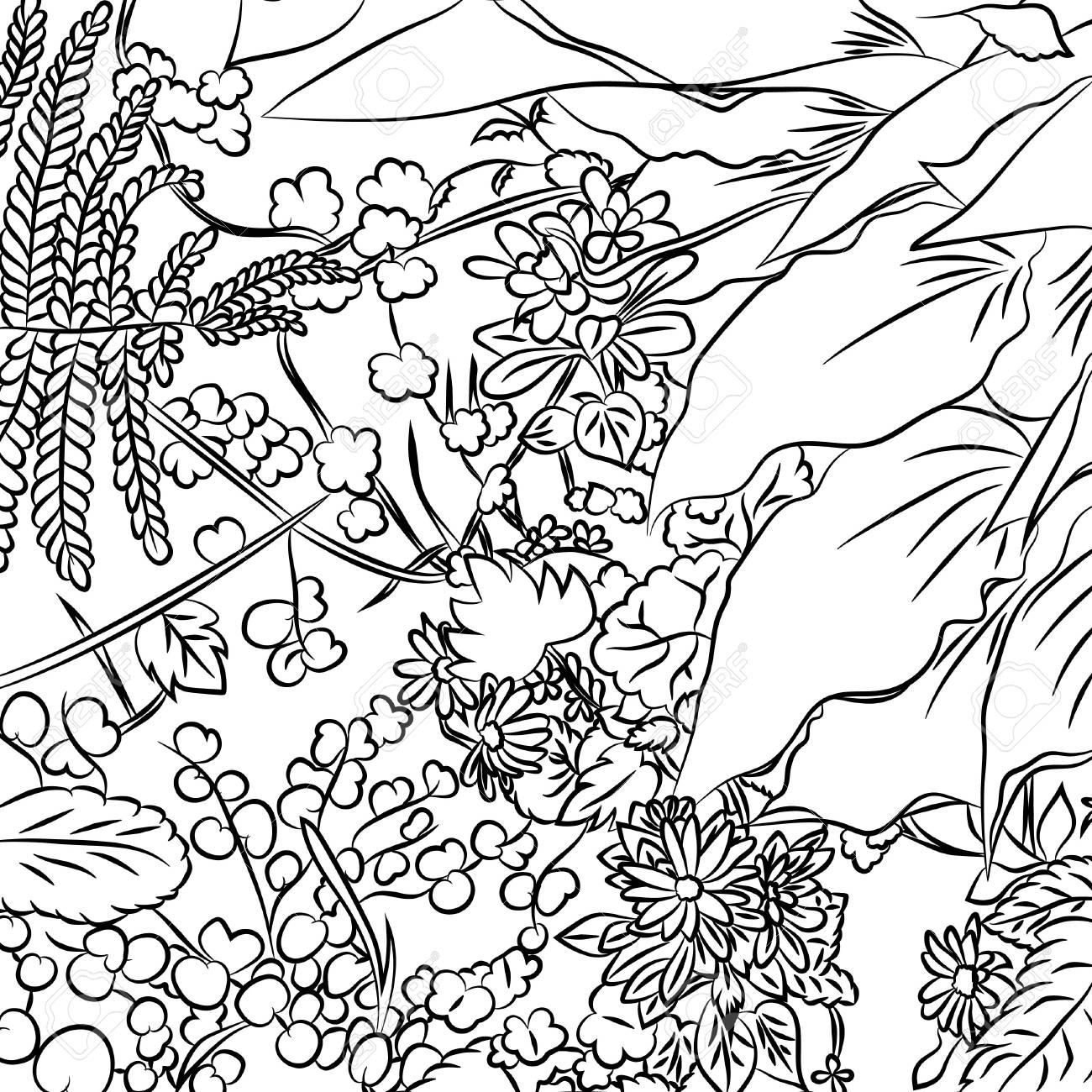 Structure Of Flowers And Plant Leaves Vector Illustration Anime Black Outline On