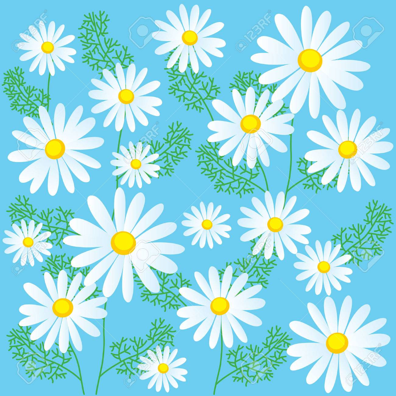 Chamomile flowers on a blue background seamless vector chamomile flowers on a blue background seamless vector illustrations chamomile flowers for sale izmirmasajfo Images