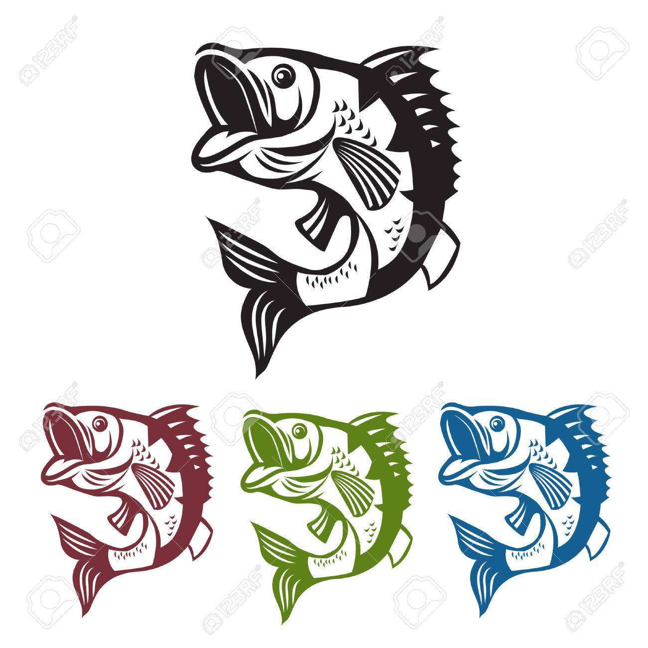 catching bass fish vector fish color graphic fish fish on a white background
