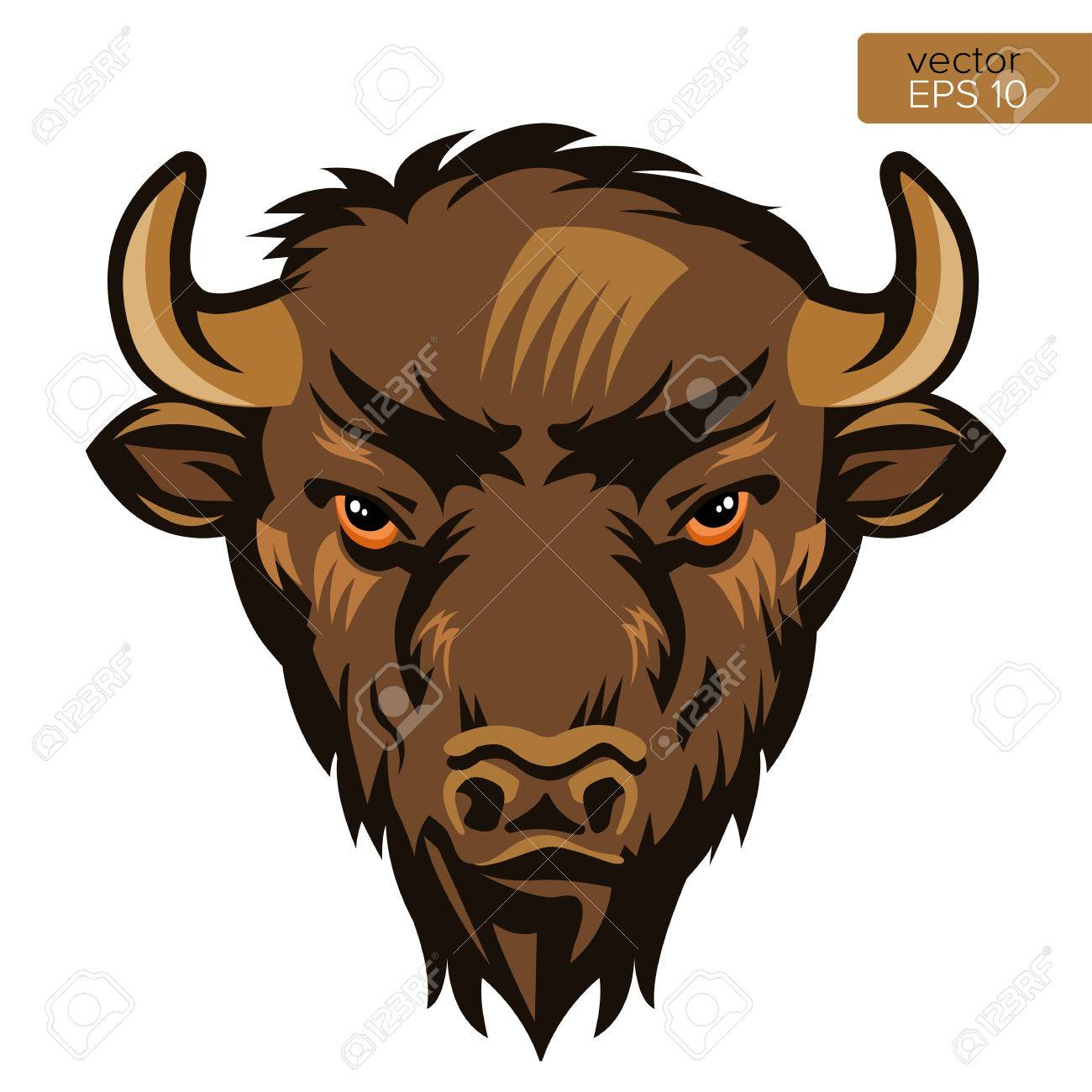 american bison bull mascot head vector illustration buffalo
