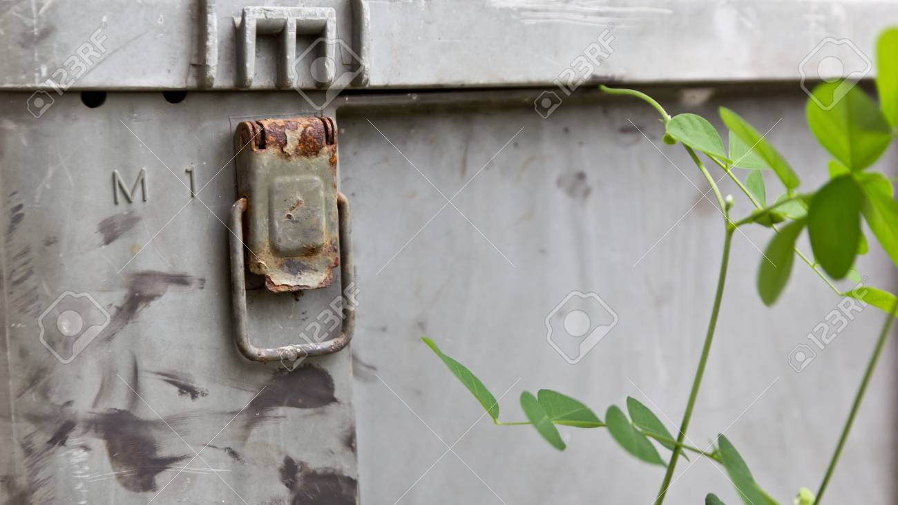 The Plastic box with old trees around it Stock Photo - 13827468
