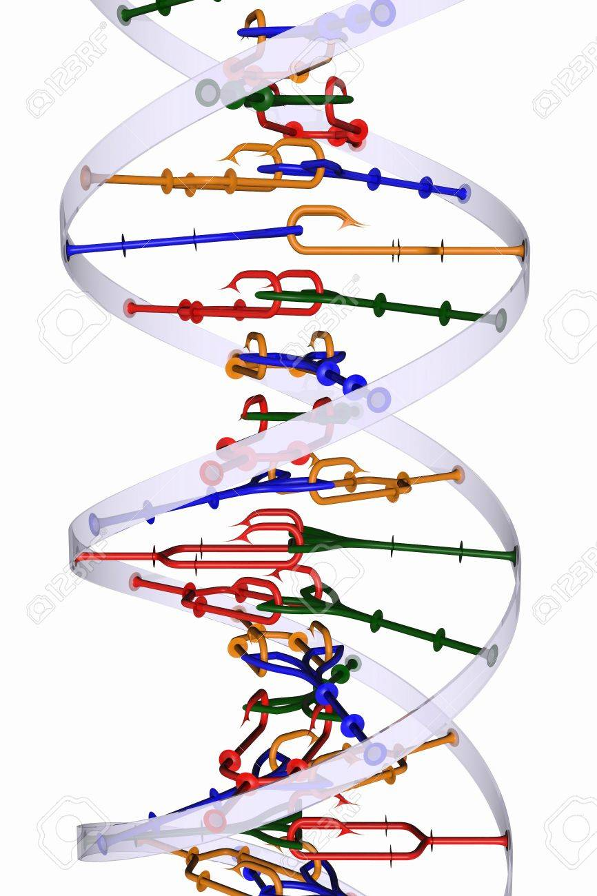 Isolated DNA helix Stock Photo - 12477616