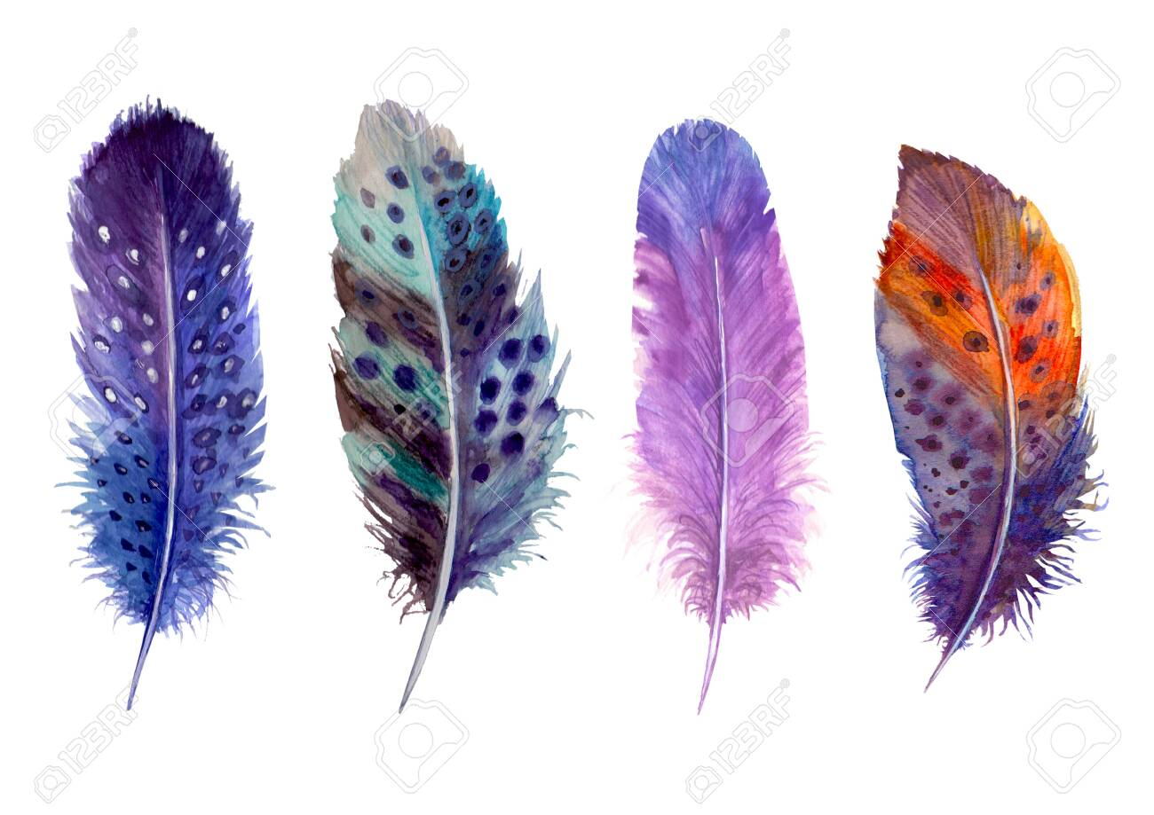Watercolor feathers set isolated on white. Hand drawn watercolour bird feather vibrant boho style bright illustration. Print design for t-shirts, invitation, wedding card. - 139118863