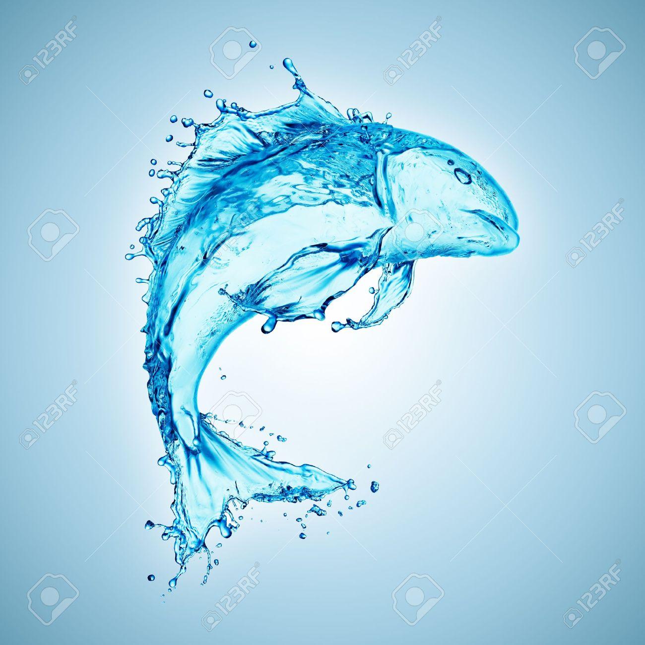 water fish splash isolated on white background - 12770448