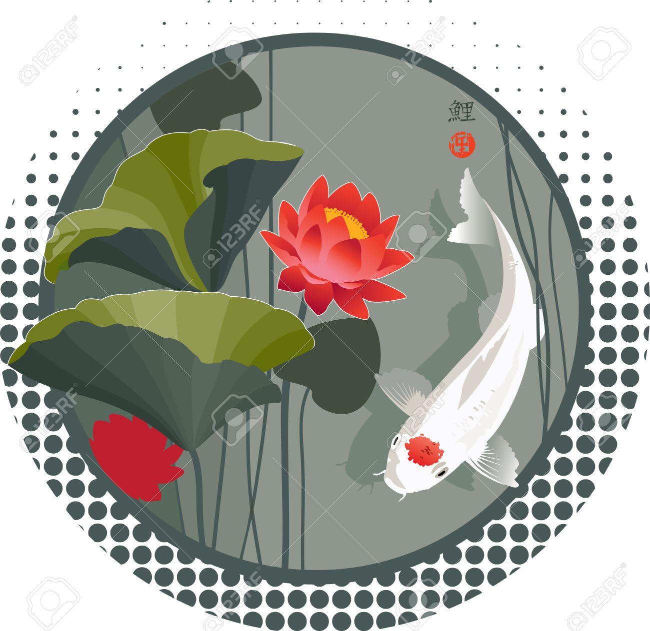 Ilustración Del Vector Del Sagrado Japonés Koi Carpa Y Flor De Loto ...