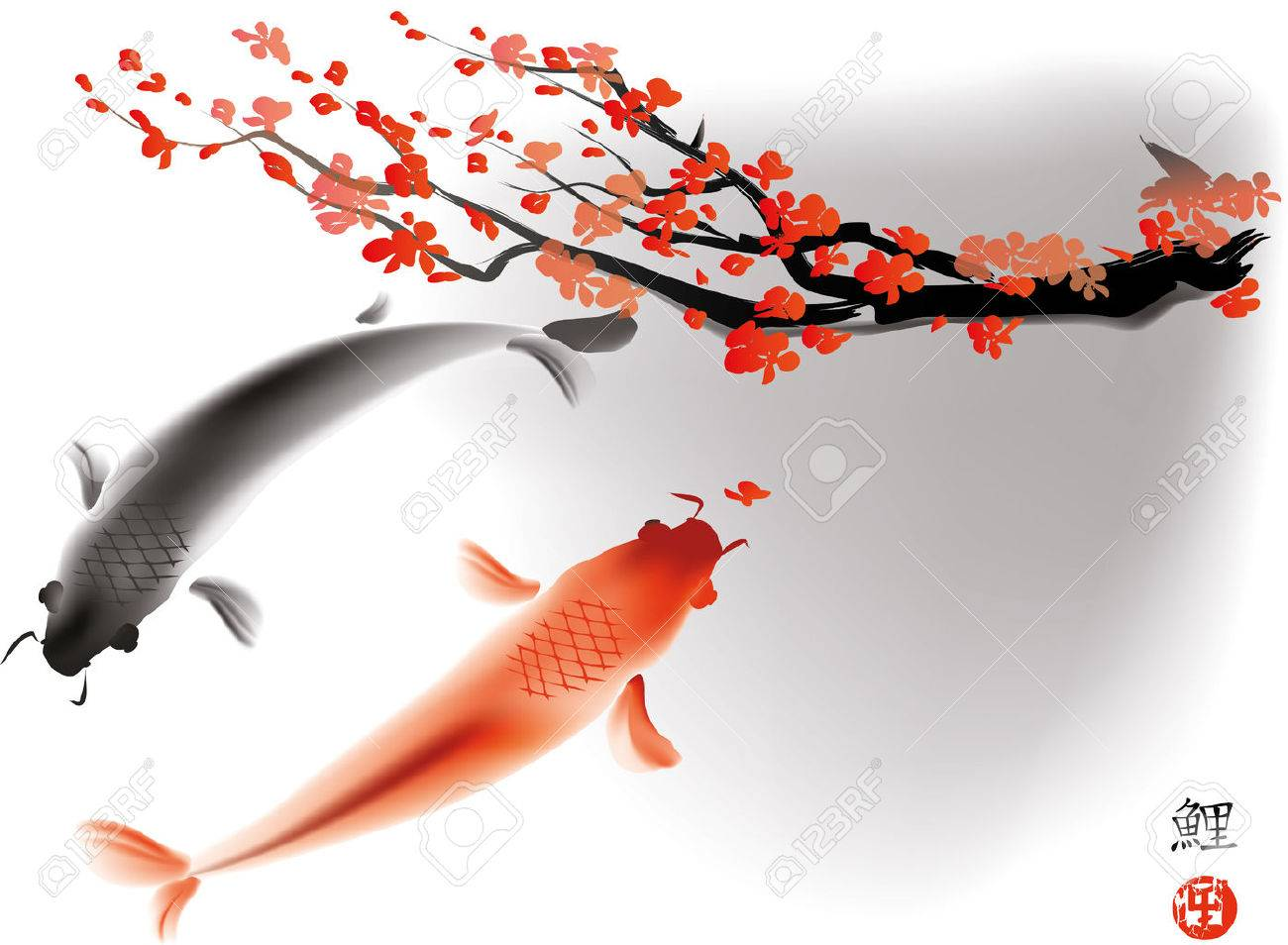 Artistic vector illustration of koi carps couple in water - 47282701