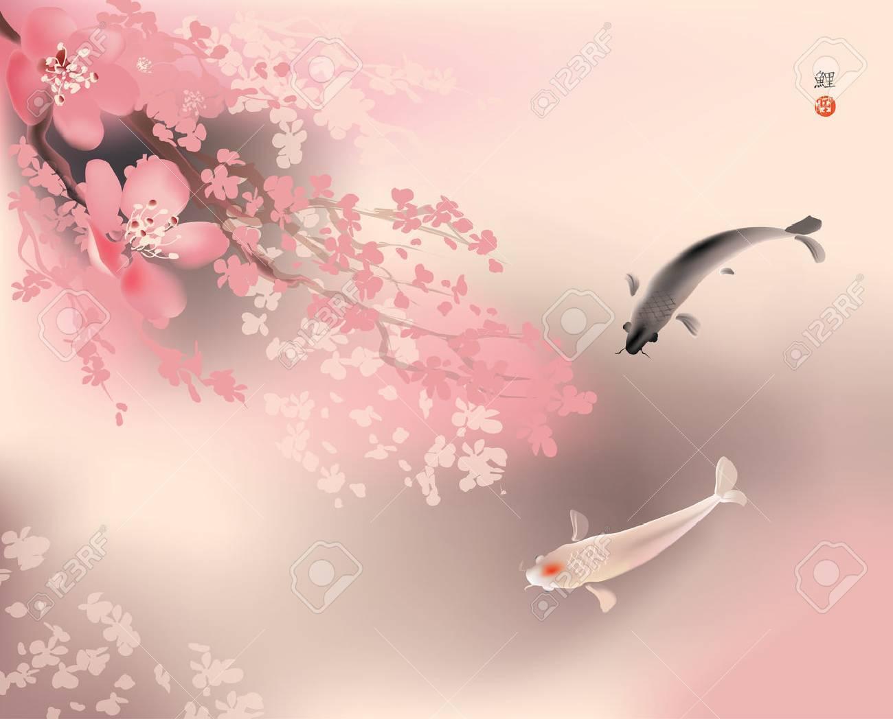 Vector illustration of sacred Koi carps and spring sacura blooming - 47810158