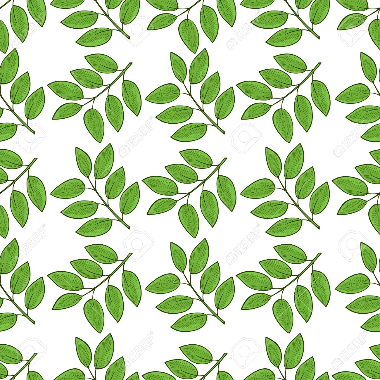 Green Leaves Branch White Background Wallpaper Texture Seamless