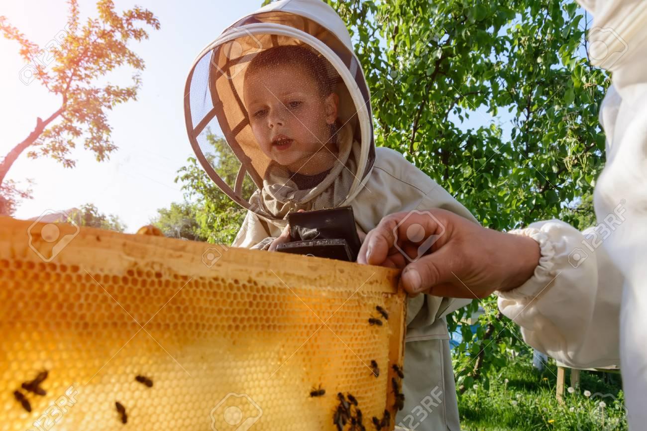 apiculteur 94