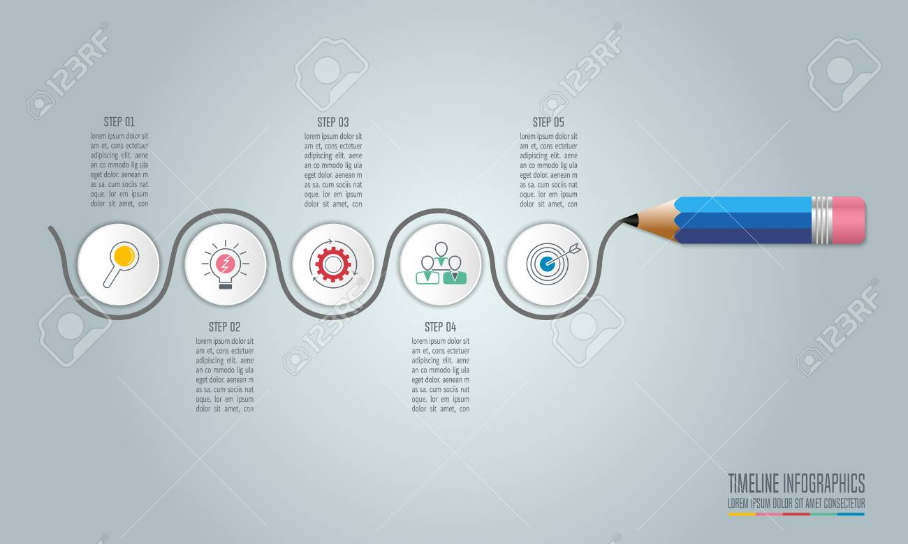 education infographics template 5 step option. timeline infographic