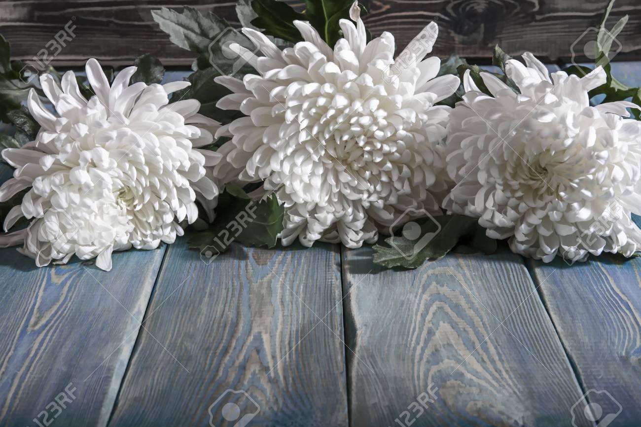 91588976-crisantemos-en-la-mesa-flores-b