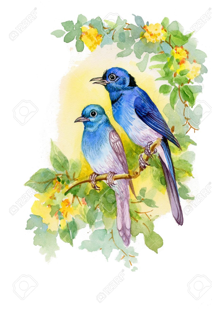 Drawing of beautiful bright birds and flowers stock vector 38172246