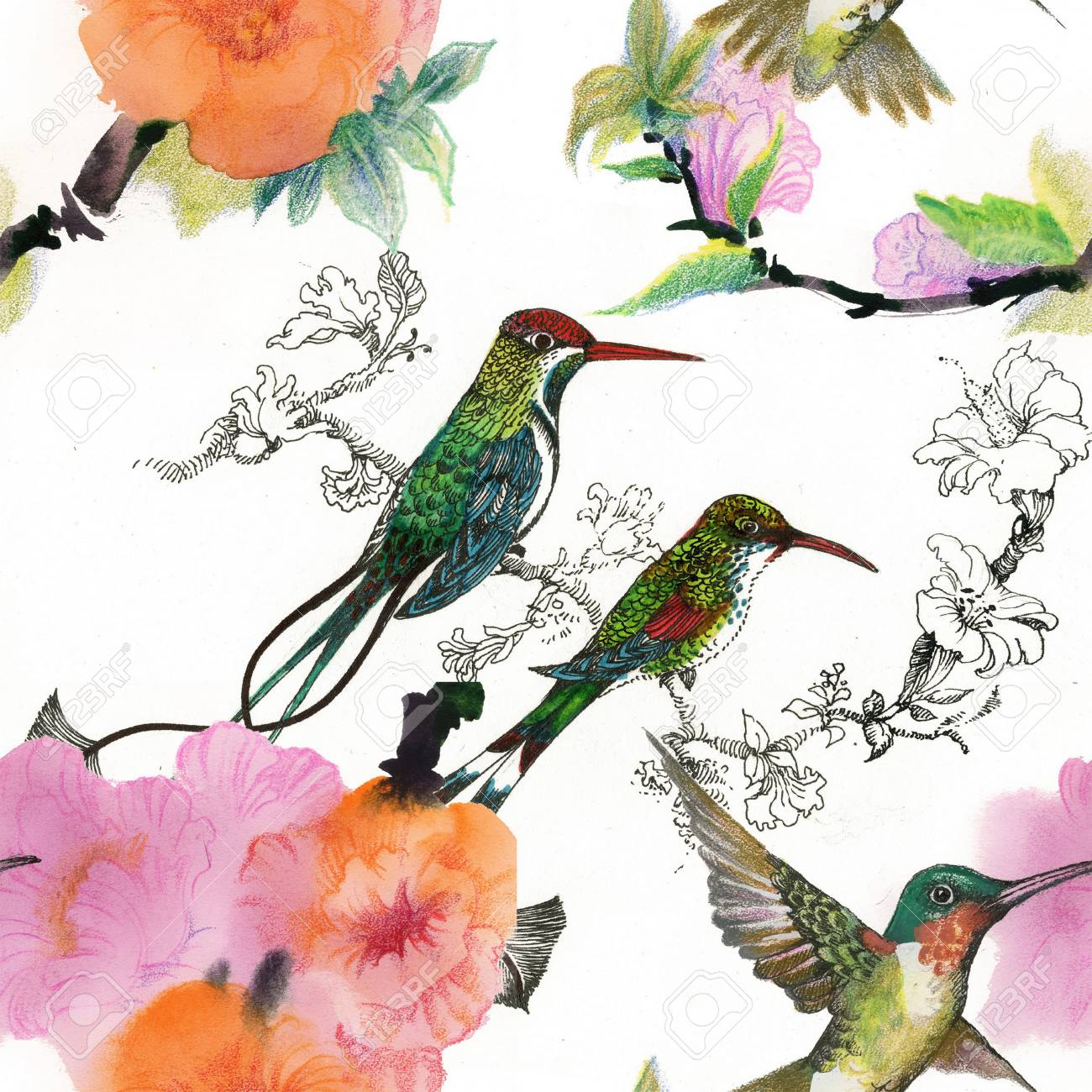 Drawing of beautiful bright birds and flowers seamless pattern stock drawing of beautiful bright birds and flowers seamless pattern stock photo 38410855 izmirmasajfo