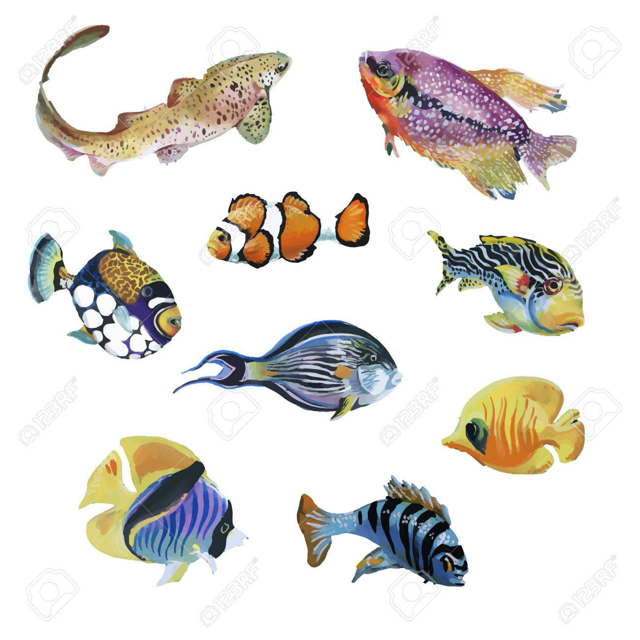 Marine life watercolor set with Tropical fish. - 46095257