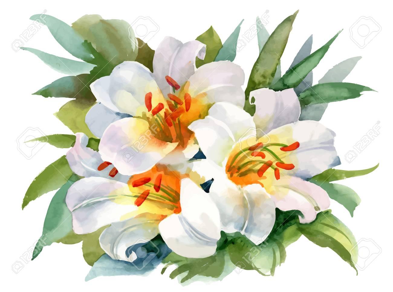 Flores Acuarela Fondo Blanco