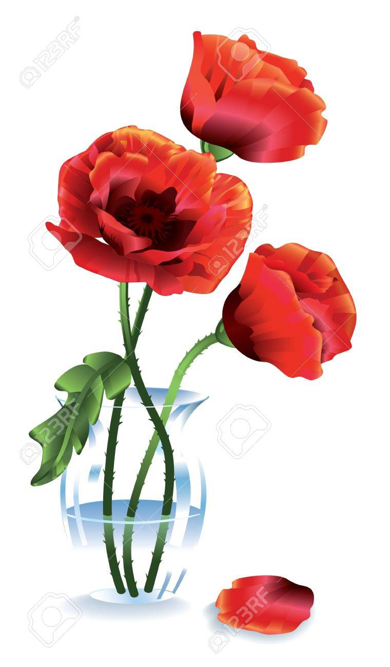 Silk Red Flowers Poppies In A Glass Vase Royalty Free Cliparts