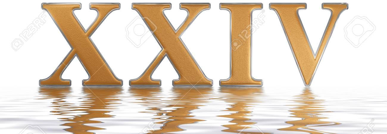 Roman Numeral Xxiv Quattuor Et Viginti 24 Twenty Four Reflected