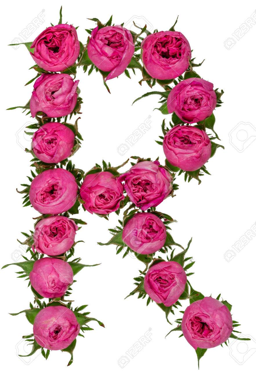 Letter r alphabet from flowers of roses isolated on white letter r alphabet from flowers of roses isolated on white background stock photo 79458165 altavistaventures Choice Image
