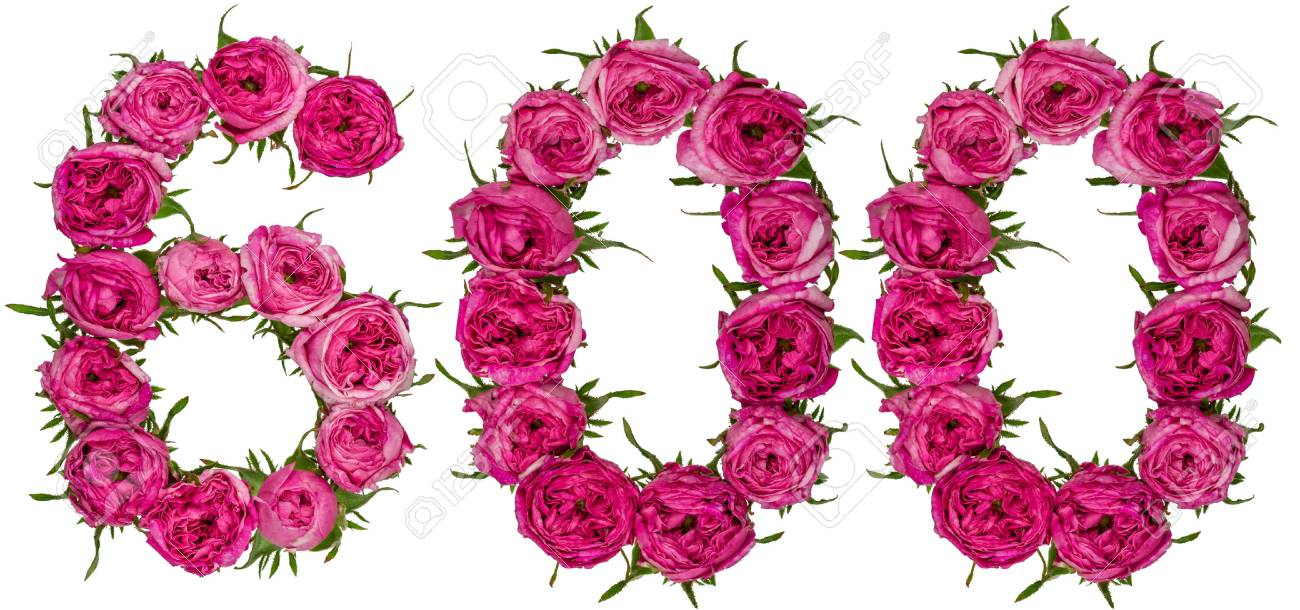 Arabic numeral 600 six hundred from red flowers of rose isolated arabic numeral 600 six hundred from red flowers of rose isolated on white mightylinksfo