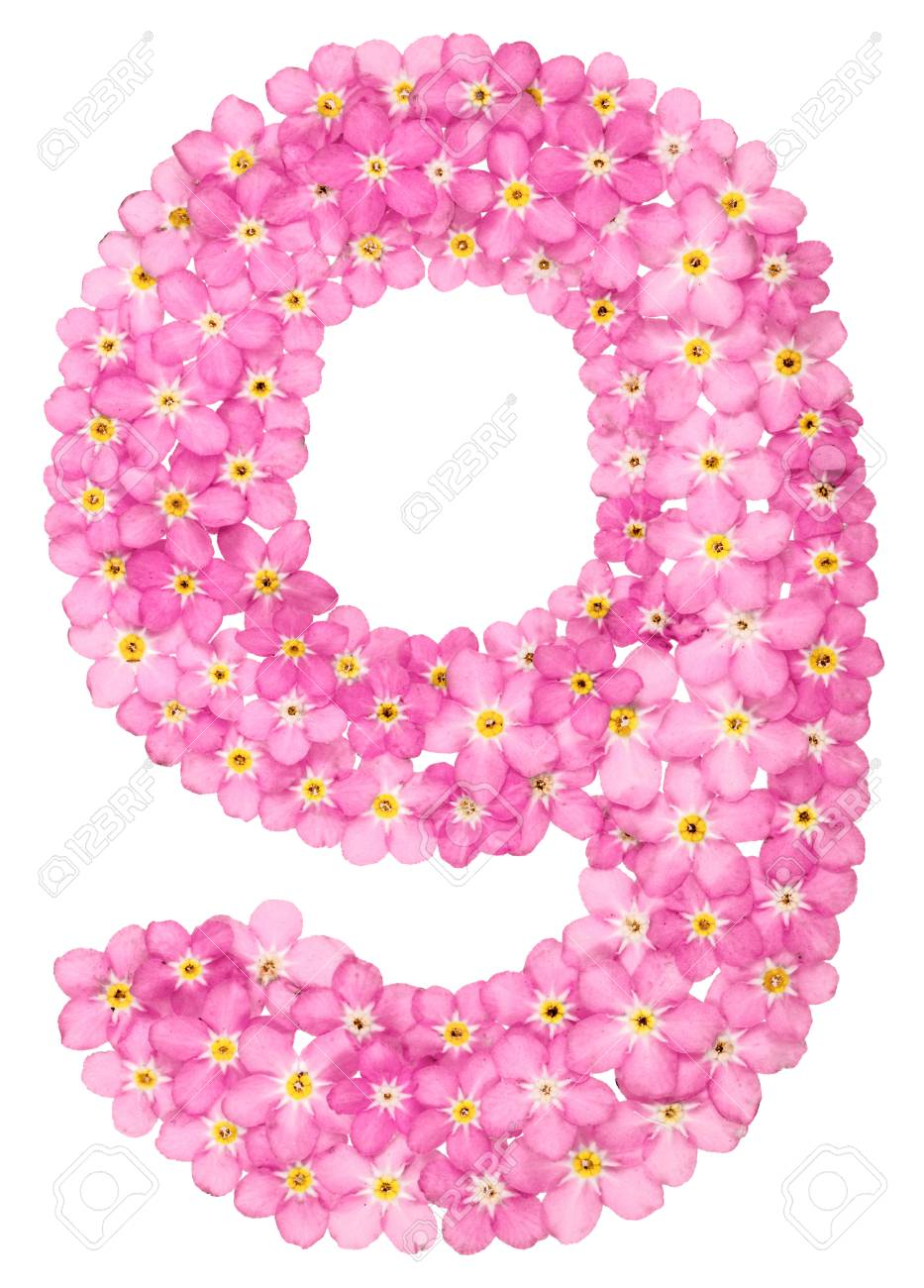 Arabic Numeral 9 Nine From Pink Forget Me Not Flowers Isolated