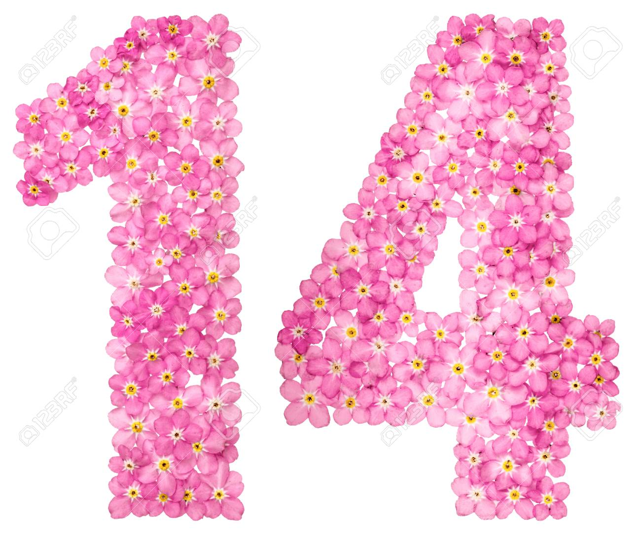Arabic Numeral 14 Fourteen From Pink Forget Me Not Flowers